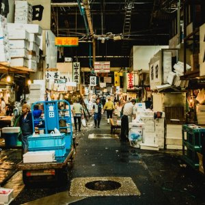 Tsukuji breakfast and market tour