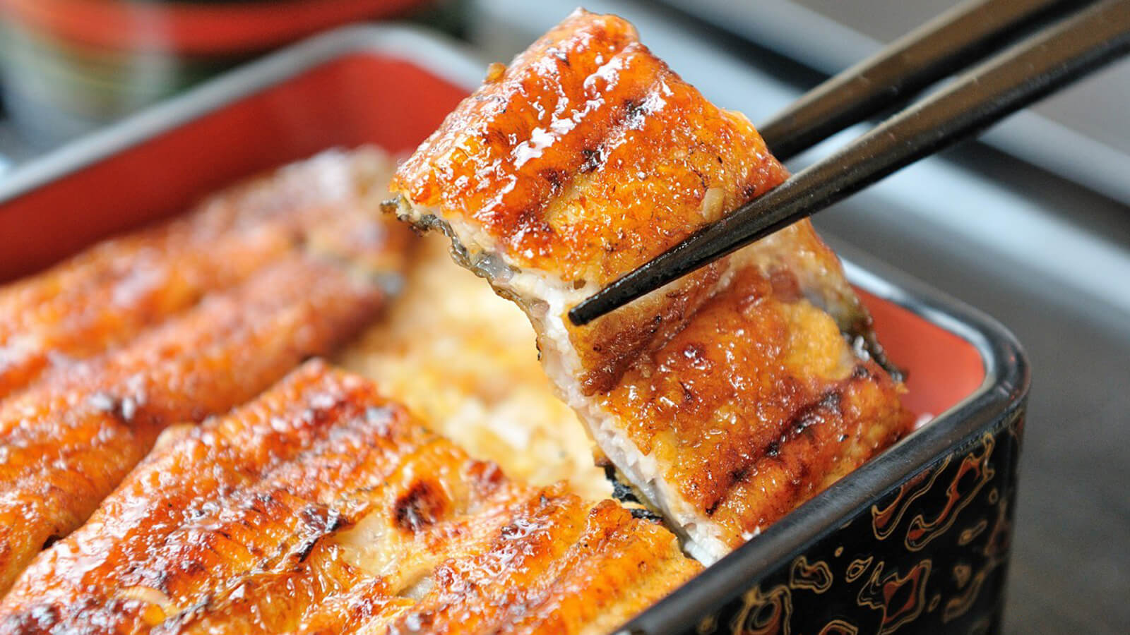 UNAGI FOR SUMMER