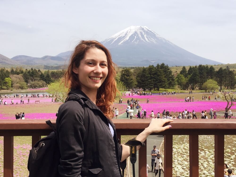 Fuji Sibazakura warmcheaptrips