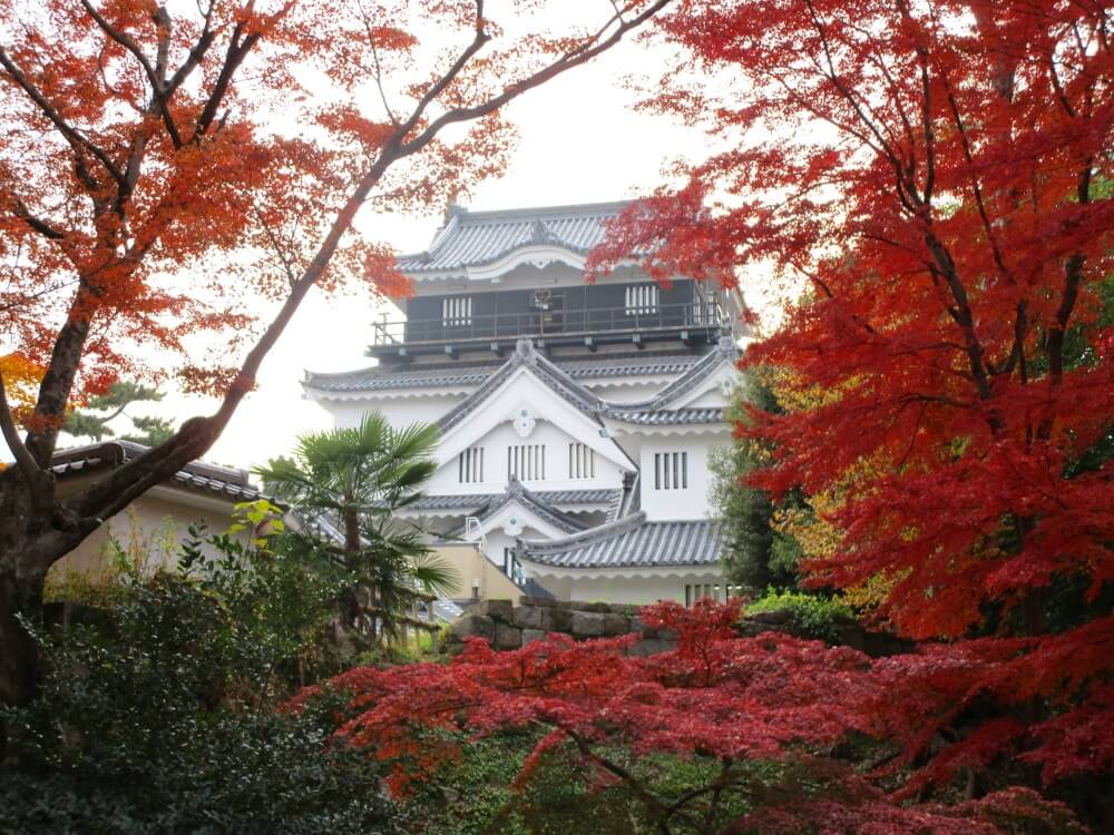ichigoichielove autumn
