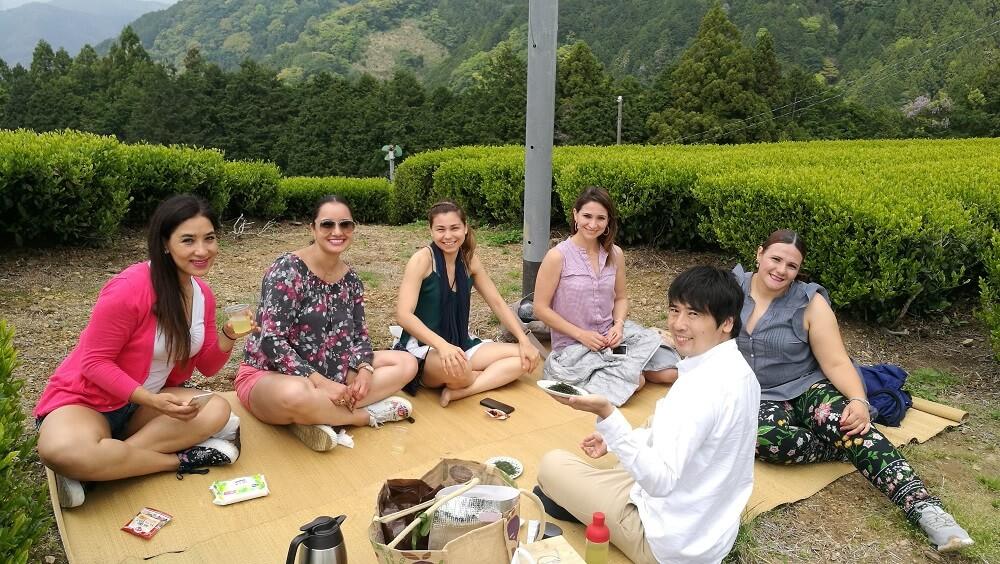 Tea Cup Trip, picnic