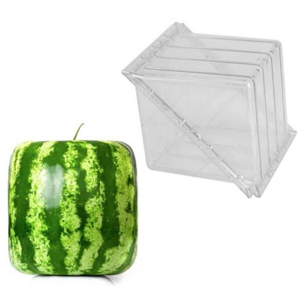 Watermelon mold